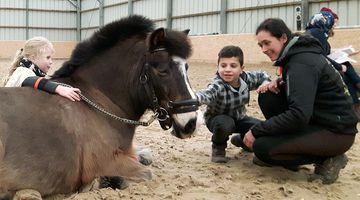 Pferde erleben © Johannes Wallbrecht