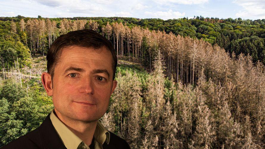 Dirk Hennig vor den Klimaschäden im Westerwald